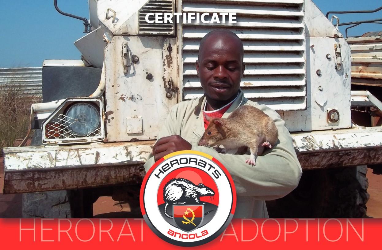 adopt a HeroRat
